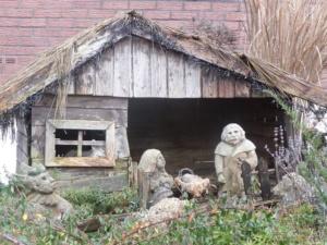 gesehen in einem Garten in Reichelsheim
