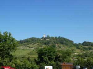 Blick zur Starkenburg